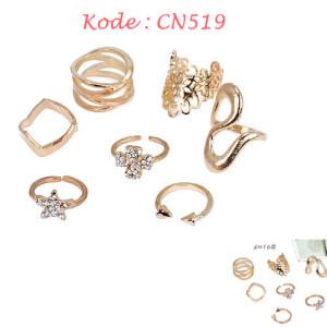 CN519